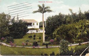 Bermuda - Dellwood