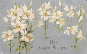 Holiday Easter Unused
