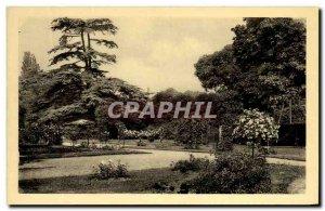 Old Postcard Chateau De La Malmaison Rose Garden And Cedre From Marengo