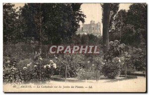 Old Postcard Amiens Cathedral for the Jardin des Plantes