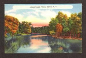 NY Greetings from ACRA NEW YORK Postcard Linen PC