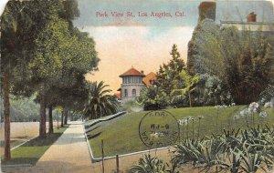 Los Angeles California 1909 Postcard Park View Street