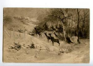 156452 HUNT Deer by PAPANICHEK Vintage PC