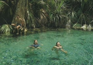 Giggling Girls Swimming in Mataranka Thermal Pool Australia Postcard