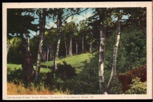 Prince Edward Island CAVENDISH Haunted Woods Green Gables - PECO - White Border