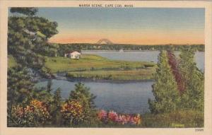Massachusetts Cape Cod Marsh Scene 1938