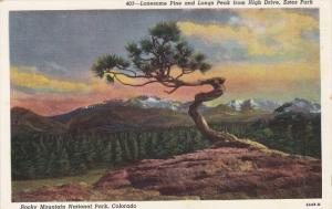 ROCKY MOUNTAIN, Colorado, 1930-1940's; Lonesome Pine And Longs Peak From High...