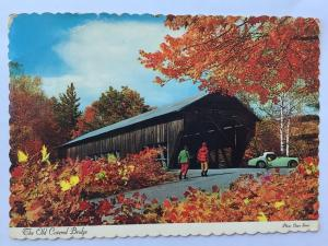 The Old Covered Bridge Fall Leaves Autumn 1960s TR3 classic car Postcard A37