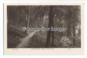 tq1292 - The Foot Path through the Pwllycrochan Woods, at Colwyn Bay - postcard