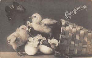 D58/ Easter Greetings Holiday Postcard 1908 Real Photo Chicks Basket Butterfly 5