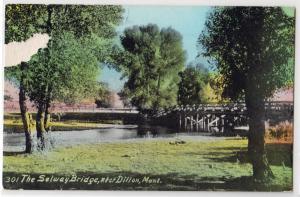The Selway Bridge, Dillon MT