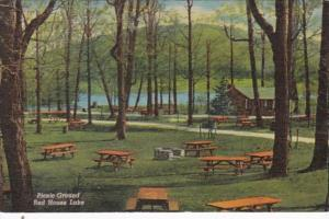 New York Allegheny State Park Picnic Ground Red House Lake Curteich