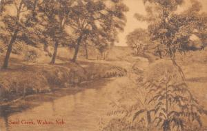 Wahoo Nebraska~On the Banks of Sand Creek~Trees Reflect in Water~1912 Sepia PC