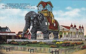 New Jersey Atlantic City Elphant Hotel Margate City