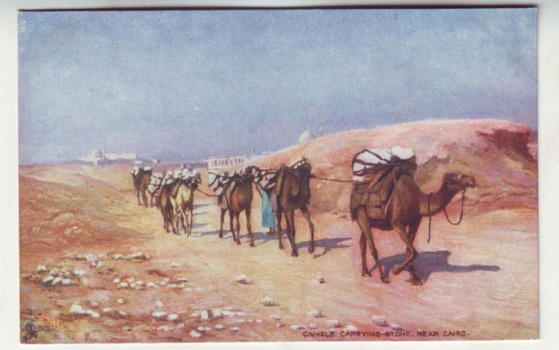 P256 JLs old tucks postcard egypt camels carry stone cairo