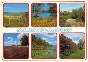 Schleswig Holstein multiviews See Lake Landscape