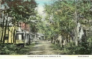 Amherst New Hampshire Cottages Baboosic C-1910 Postcard hand Colored 6229