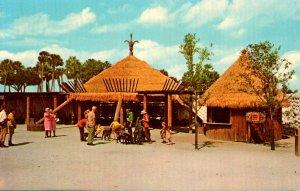 Florida Tampa Busch Gardens Contact Area In The Boma