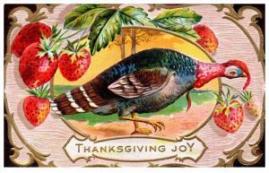 16124  Thanksgiviing   Turkey strawberry border