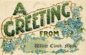 c1909 Embossed Postcard Greeting from White Cloud MI, Forget me Nots, Newaygo Co