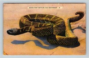 Southwest Rattle Snake, Coiled, Rings, Linen, Postcard