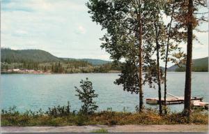 McLeese Lake BC north of Williams Lake Unused Vintage Postcard D65