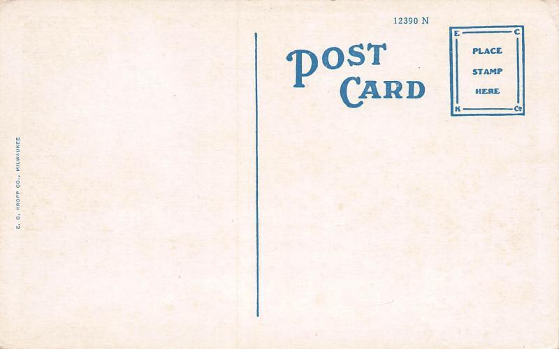 High School, Columbus, Wisconsin, Early Postcard, Unused
