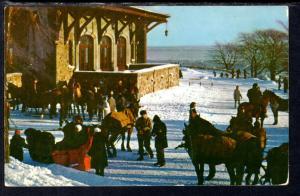 Winter Fun,Mount Royal,Montreal,Quebec,Canada BIN