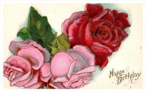 8513 Birthday  Roses
