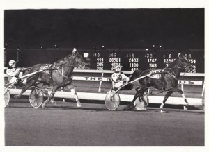 MEADOWLANDS RACE TRACK Harness Horse Race, STORMY PUSUIT Wins Race, 1985