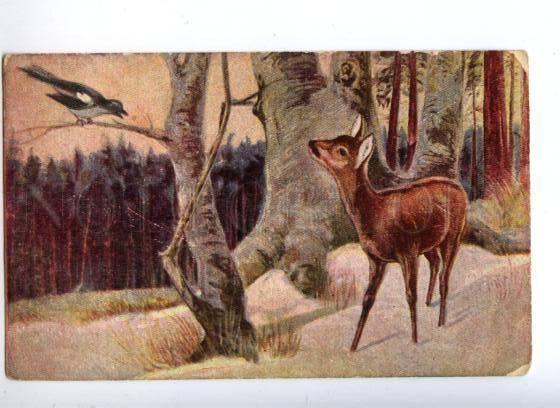 156664 Winter Hunt DEER & MAGPIE vintage color PC