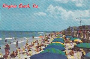 Virginia Beach Sun Bathing On The White Sands Of The Outstanding Resort Area ...