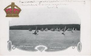 The Harbor ~ Shelburne NS Nova Scotia ~ Sails Sailboats c1905 Vintage Postcard