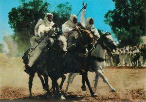 Libya libyan horsemen race postcard