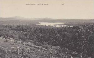 Maine Lincoln Dead Stream Artvue