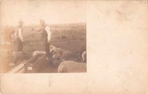 Uruguay Camping Farming Scene Real Photo Antique Postcard J72218