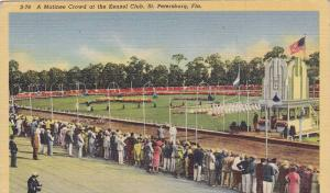 A Matinee Crowd at the Kennel Club,  St. Petersburg,   Florida,  30-40s