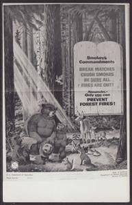 Smokey The Bears Commandments Postcard