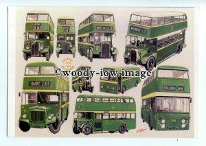 tm6104 - Salford City Transport Buses 1946-1969. Artist - G.S.Cooper - postcard