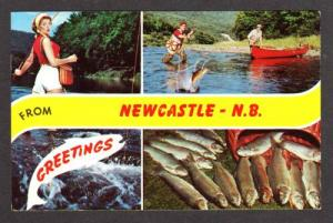 NB Greetings From NEWCASTLE NEW BRUNSWICK Canada PC