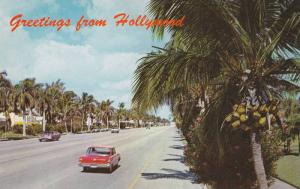 Typical Street scene in Hollywood,  Florida,  40-60s