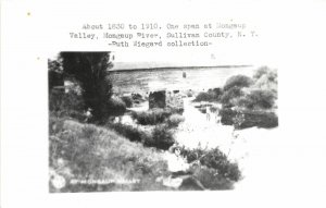 F55/ Mongaup Valley New York RPPC Postcard c1950s Covered Bridge
