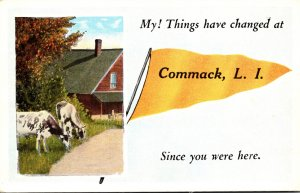 New York Commack Long Island My Things Have Changed Pennant Series