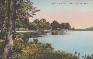 New York Lily Dale Middle Cassadaga Lake Albertype
