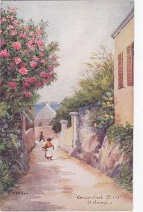 Cumberland Street , ST. GEORGES , Bermuda , 30-50s ; C.F. TUCKER