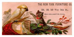 Trade Card  New York City Furniture Co.   Cat and Parrot