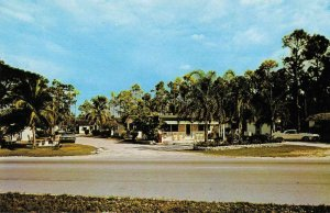 Homestead Florida Southern Pines Cottages and Trailer Park Postcard JF360663