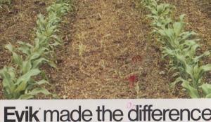 Evik Herbicide Herb Farm Farming Plant Killer American 80s Advertising Postcard