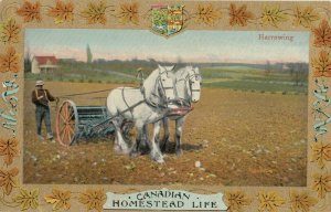Homestead Life , Canada , 1900-10s ; Harrowing