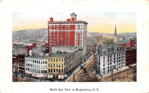 Bird's Eye View Binghamton, New York